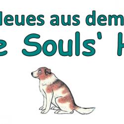 News aus dem Little Souls' Home vom 20.09.21 – 26.09.21