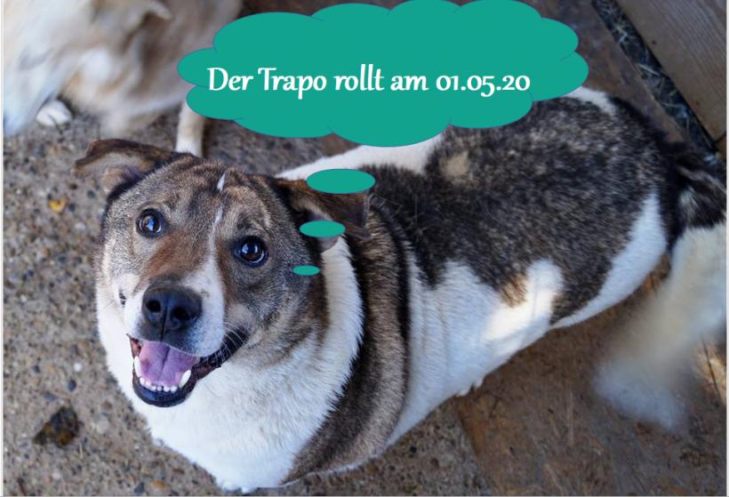 30.04.2020 – Unser Trapo rollt am 01.05.2020