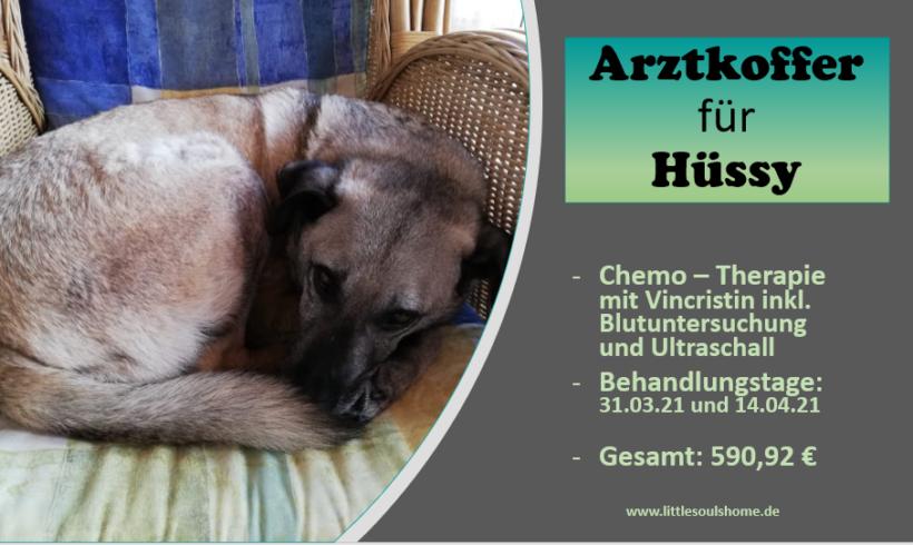 Tierarztkoffer für Hüssy